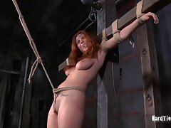Redhead amateur Ashlee Graham tied up and poked in her holes